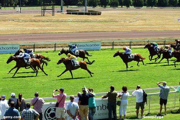 mardi 21 juillet 2015 vichy plat 2400 mètres avec 16 chevaux arrivée de cette course 8 4 14 1 3