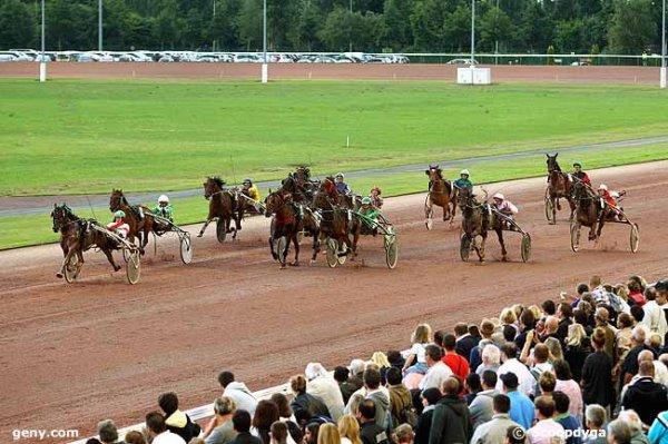 vendredi 24 juillet 2015 cabourg trot attelé 16 chevaux  arrivée  7  16  2  15  1