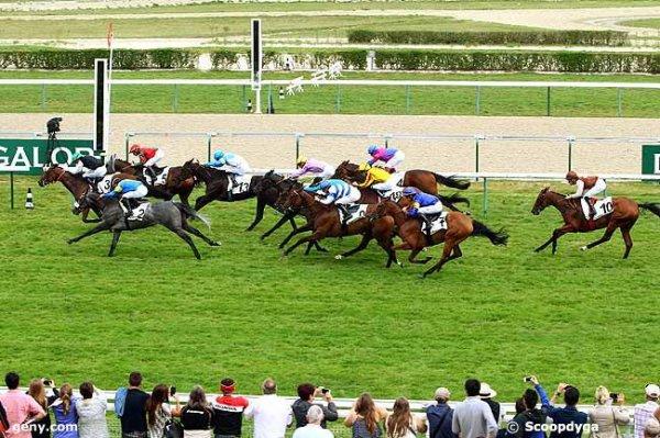 mardi 18 août 2015  deauville plat 3 ans !!!!!!   18 chevaux 2000 mètres  résultat 3 5 2 13 15