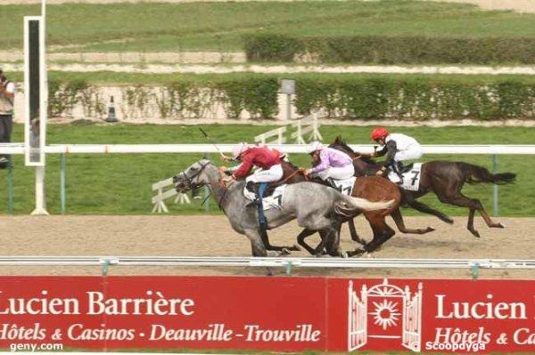 dimanche 30 août 2015 deauville plat 2500 mètres 16 chevaux arrivée 8 1 11 7 6