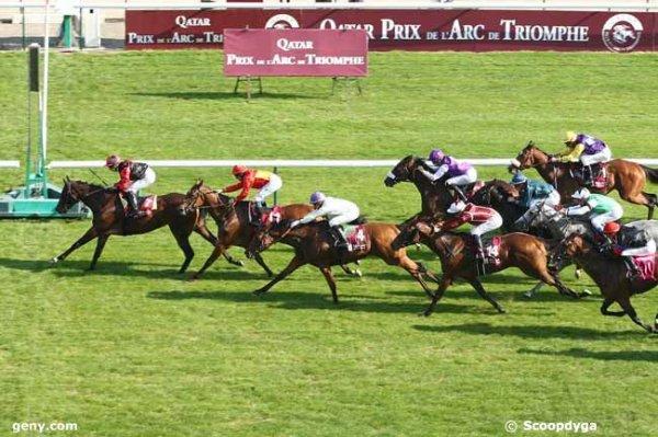 samedi 3 octobre 2015 - plat 1600 mètres à longchamp 16 chevaux départ à 15h 08 arrivée 7 11 4 14 3