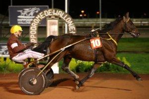 vendredi 23 octobre 2015 mons belgique trot attelé 16 chevaux départ à 20h25 résultat du quinté 3 16 8 2 12