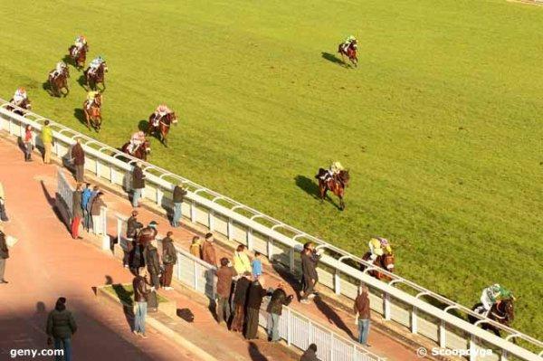 dimanche 22 novembre 2015 auteuil haies 20 chevaux arrivée 11 2 10 14 8