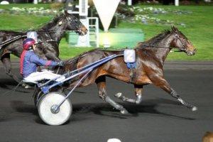 mercredi 2 décembre vincennes trot attelé 18 chevaux