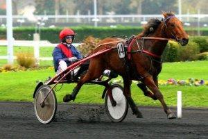 jeudi 3 décembre 2015 vincennes trot attelé 18 chevaux