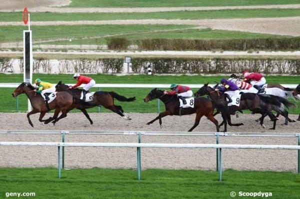 lundi 21 décembre 2015 deauville plat 16 chevaux arrivée 3 6 8 5 9