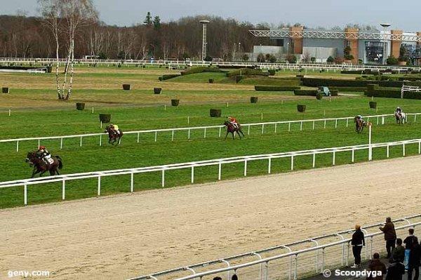 mercredi 6 janvier 2016 pau haies 3800 mètres 18 chevaux arrivée 12 11 2 4 1