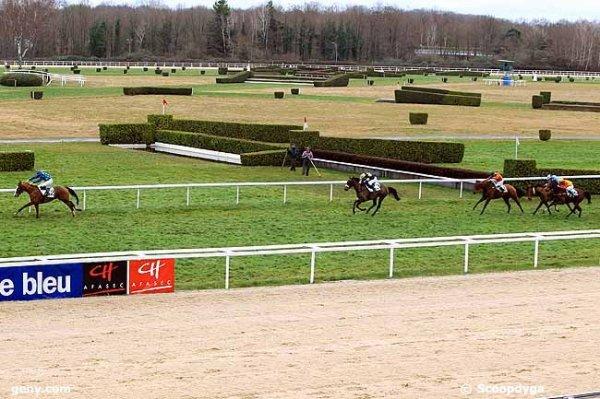 vendredi 29 janvier quinté de pau avec 16 chevaux haies 3800 mètres arrivée 2 1 3 8 5