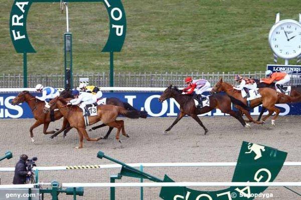 mardi 22 mars 2016 quinté de plat a chantilly 16 chevaux  arrivée 4 13 16 2 14