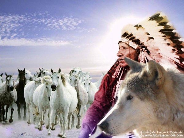 Une bien belle image amérindienne de trouvée sur le net ! (Merci au (à la) créateur(trice)  (l)