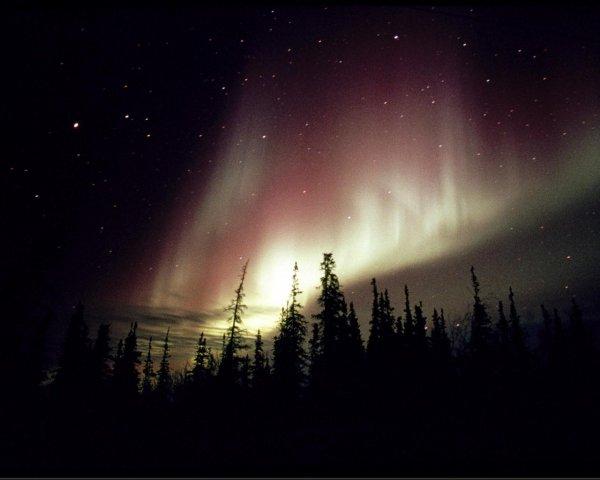 Quand la frénésie féérique existe dans l'air:  Les aurores boréales!
