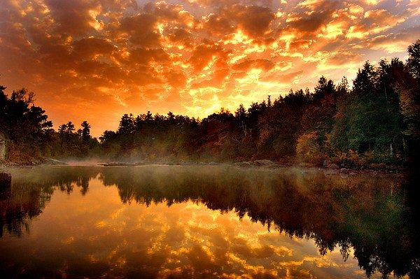 Mes images du paradis terrestre qui sont là...