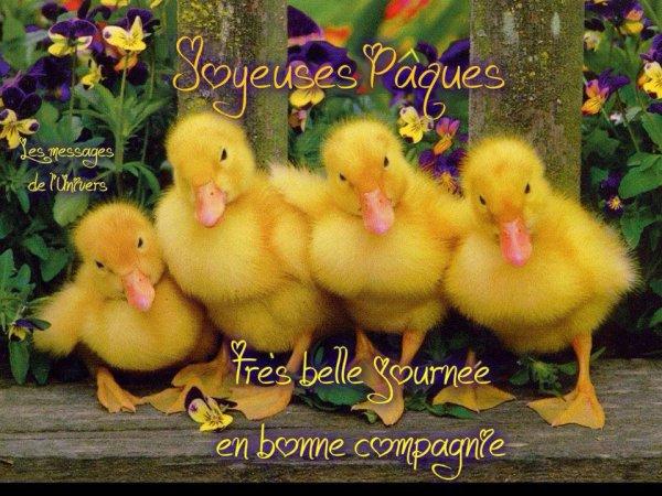 Pour des souhaits de Très joyeuses Pâques à tous!!! (l) (l) (l)