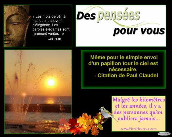 Les pensées de La Louve Rose, du 22 mars 2019 (L)