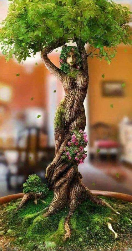 Belles images : La femme et l'arbre (l)