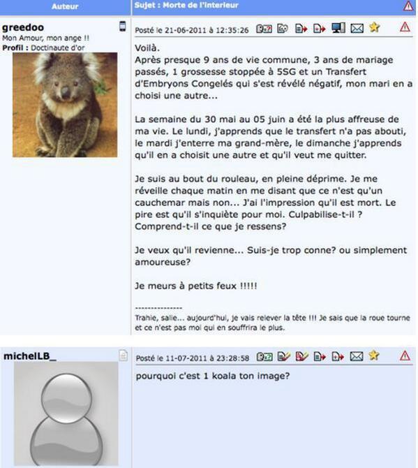 Pourquoi c'est 1 koala ton image ?