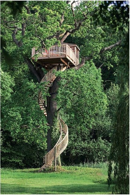 Treehouse With Amazing Spiral Stairs!