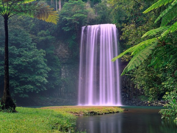 Millaa Millaa Falls, Austrália