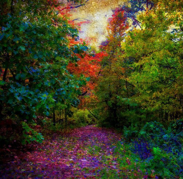 Secreto Jardim