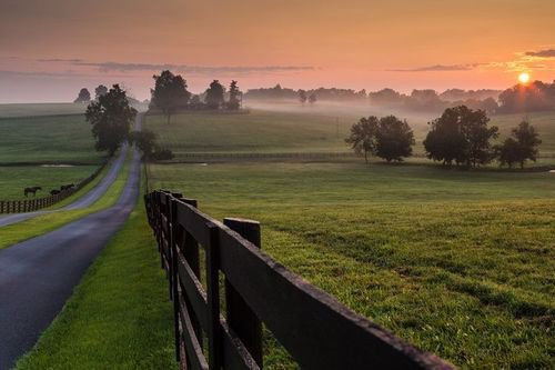 Misty sol, Kentucky USA