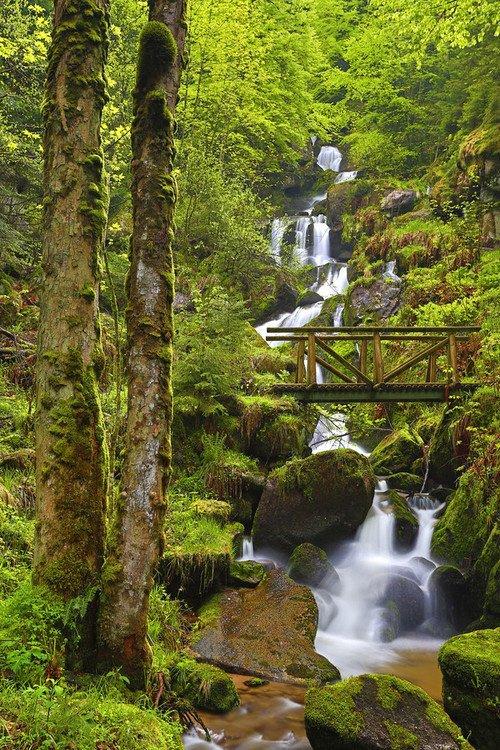 Queda de Água, A Floresta Negra, na Alemanha