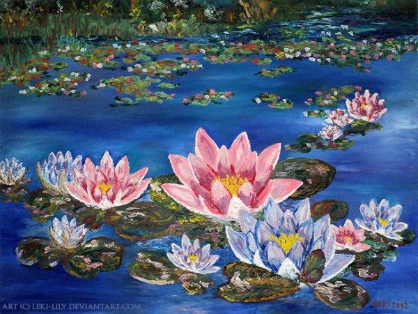 TELA, e óleo Flor de Lótus