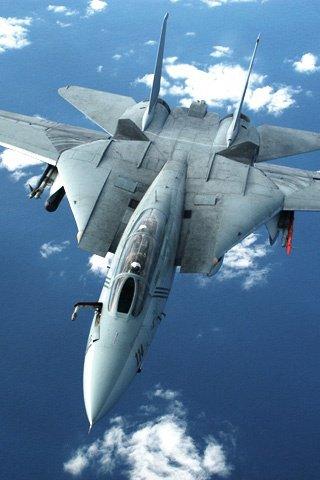 F-14 Tomcat jet fighter.