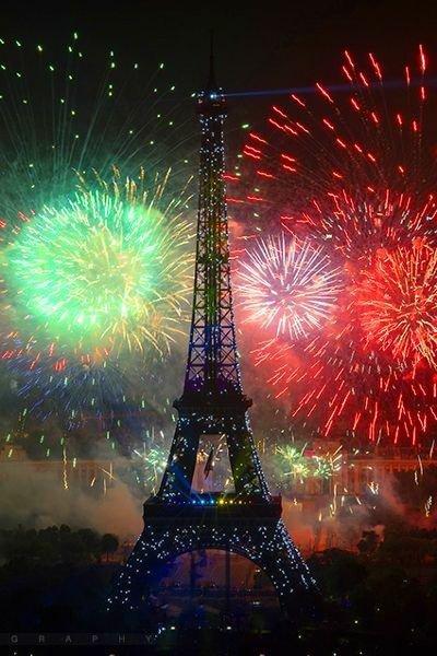 Bonne Année! 2014