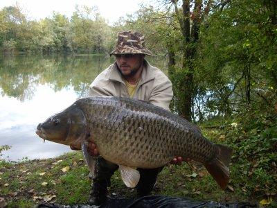 voici surment mes plu beau poissons de l'année 2010 meme si tout les poissons sont magnifique!!!!!!!!!