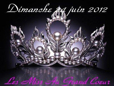 élection de miss du dimanche 24 juin 2012