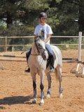 Photo de lover-of-horses-83