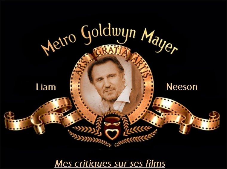 Films de Liam Neeson que j'ai vus