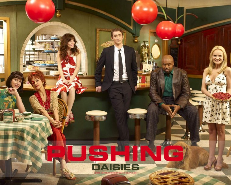 Pushing Daisies : présentation de la série