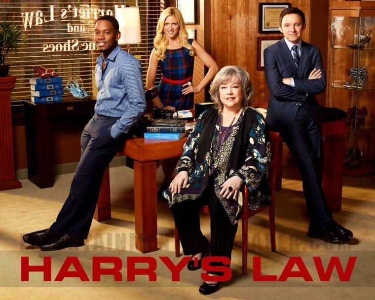 Harry's law (présentation de la série)