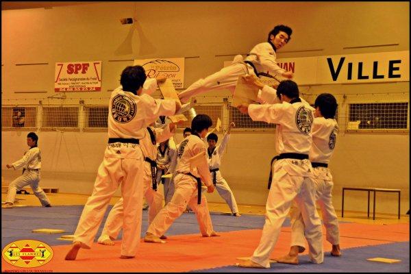 démonstrations taekwondo