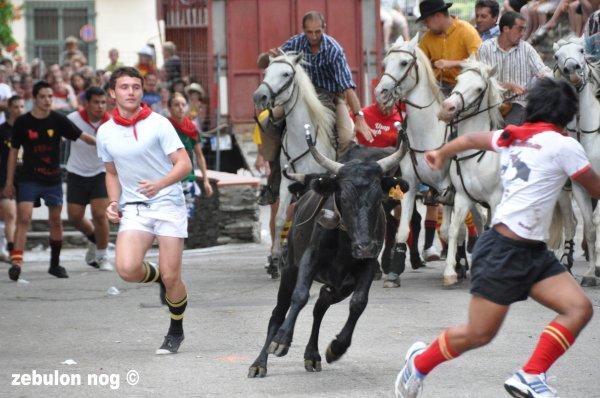 FERIA DE MILLAS 2011