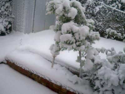 La belle neige!!