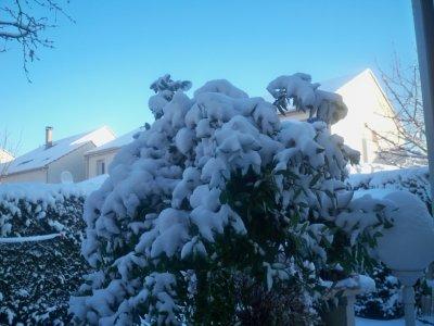 Après la neige ,ce beau soleil