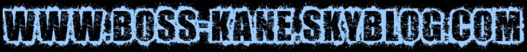 - Boss Kane -  × |[.Aятίίcℓ℮ o1.]| ×  Présentation