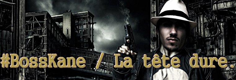 Mixtape Vol.1 / La Tête Dure (2009)