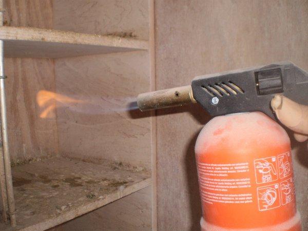 Passage de la flamme dans les casiers de jeunes ce matin
