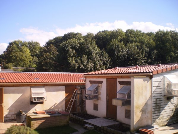 Changement de la toiture de 2 pigeonniers ( 1 de 9m40 et 1 de 5m20 )