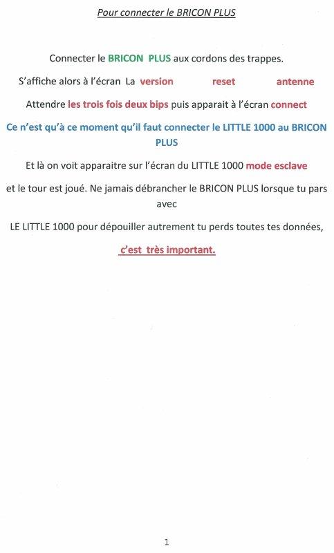 """Les frères  PODZIADLY Patrick et Philippe """" Bricon Plus """""""