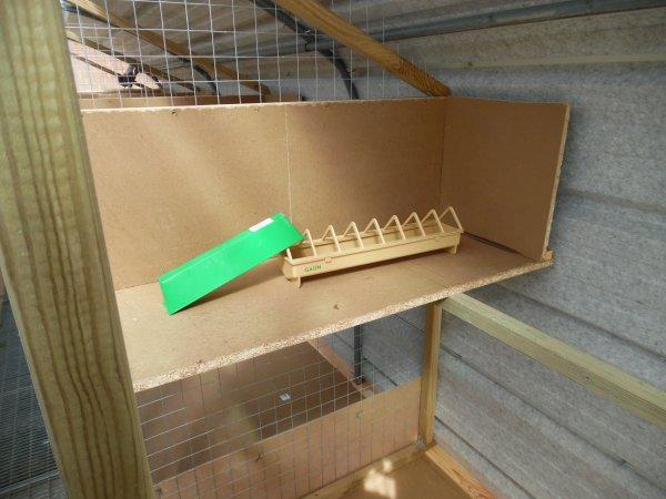 """Mes Futurs Box a pigeons seront fait dans ma veille serre """" """" Les 8 Box sont terminés """""""