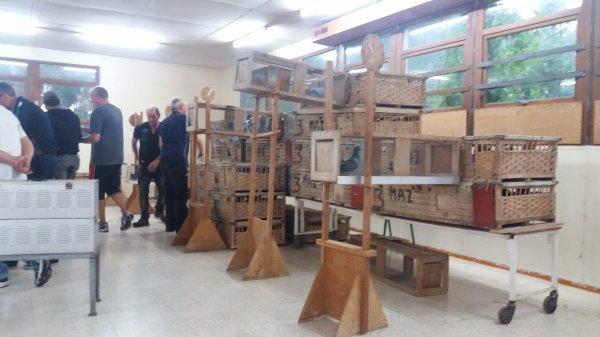 """36 Jeunes a Argenton """" Enlogement chez les Défenseurs du Poilu """" Ville de Mazingarbe"""