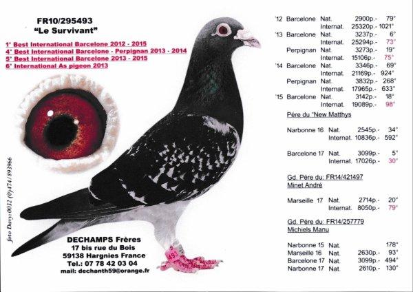 """Achat de 3 Frères Dechamps de la vente du Dimanche 04/02/18 """" Un couple de Fait et mis dans un Box """""""