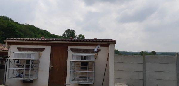 Argenton du 18/05/19 un Fédéral  435,027Km // 15000 Pigs Remonte sur Vierzon 358,484Km