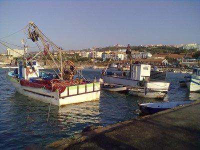 port de tipaza  a l'été