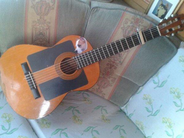 Nouvelle guitare