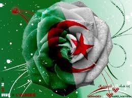 الجزائر لا تُهزم في نوفمبر...ALGERIA CAN'T BE DEFEATED IN NOVEMBER